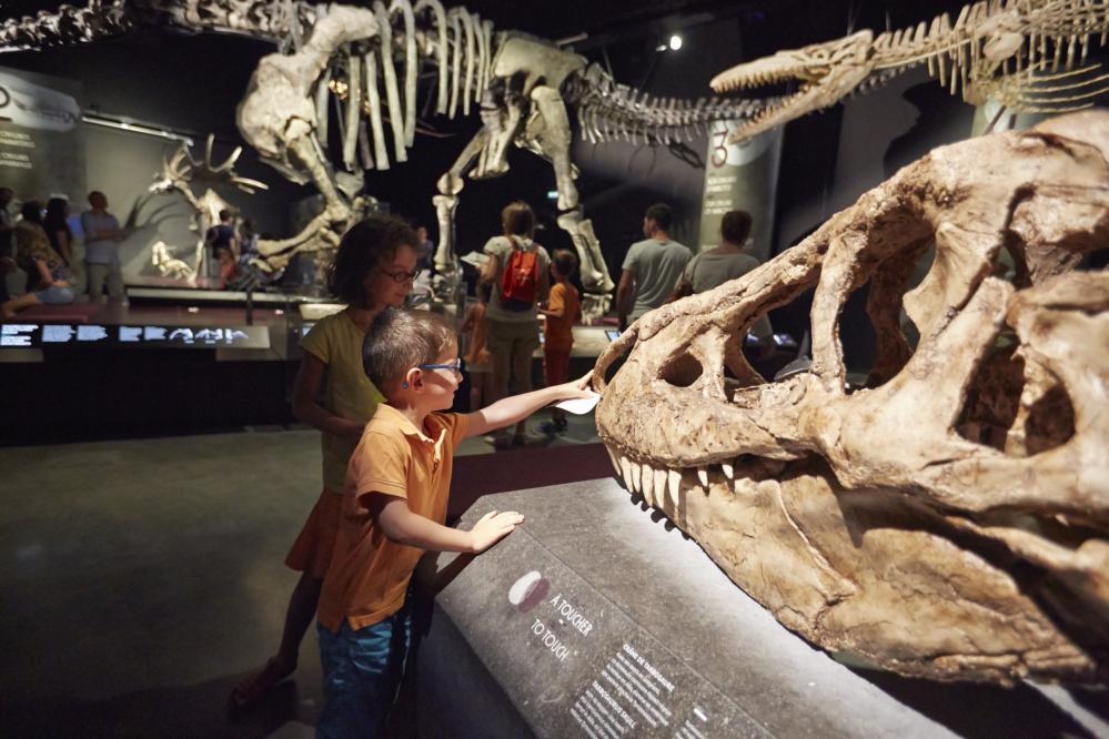 Children - Musée des Confluences