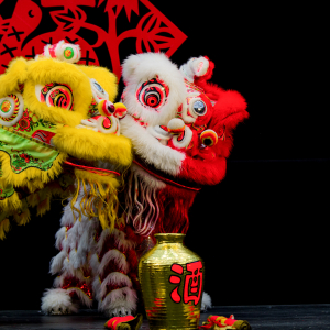 Edmonton Chinese New Year 2013 - VisualHunt.com
