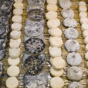 Cheeses at the Halles de Lyon Paul Bocuse © Tristan Deschamps