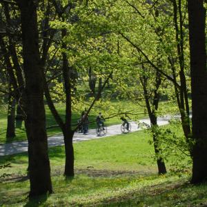Parc de Parilly à Bron