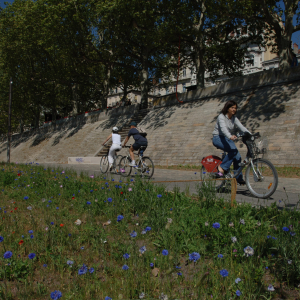 Biking by bike on the banks of the Rhone © Jack Leone / Grand Lyon
