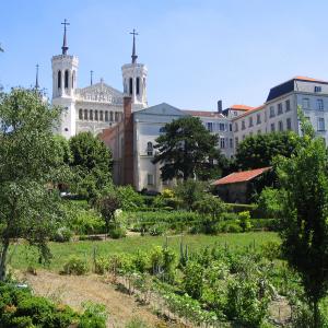 Fourvière gardens