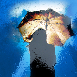 Il pleut ! © 3618866 - adamtepl / Pixabay
